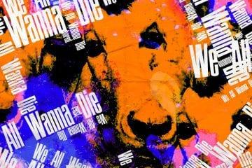 """Nesse domingo, depois do dia das crianças, tem premiére no Udigrudi: Pseudo Banda (@pseudobanda) 👍 lança o clipe """"Sussuros""""  Além deles, teremos também clipes de  Sargaço Nightclub Skinny Wall Miguel Ev  maquinas 👍⭐️⭐️⭐️⭐️⭐️ Neptunea 👍⭐️⭐️⭐️⭐️⭐️ Paes 👍 Izenzêê Banda Trápala  Drik Barbosa (com part. Luedji Luna e R.A.E)  Rashid e Dada Yute II Costa Alves 👍 = favorito do Hits Perdidos ⭐️⭐️⭐️⭐️⭐️ = gostamos muito (Udigrudi)  Não perca, neste domingo, 13/10, a partir de 20h30 na @playtv #HitsPerdidos #Udigrudi #PlayTV"""