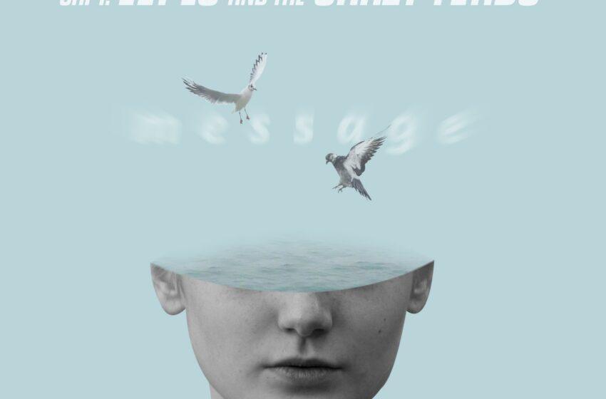 Com influência de Guided By Voices, Capt. Lopes and The Crazy Toads usa e abusa dos pedais em EP