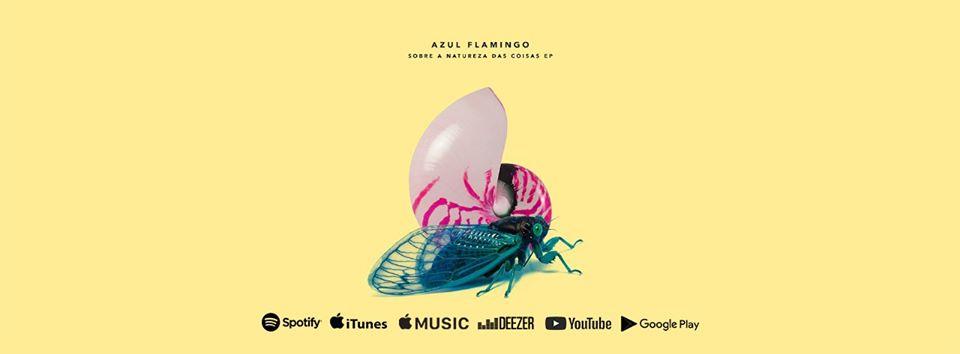 Azul Flamingo Quente