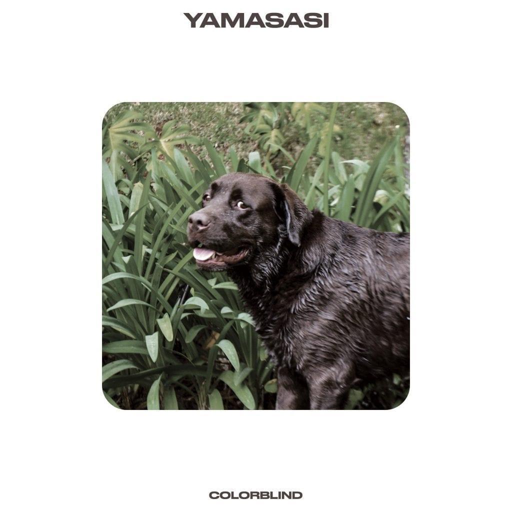 Yamasasi